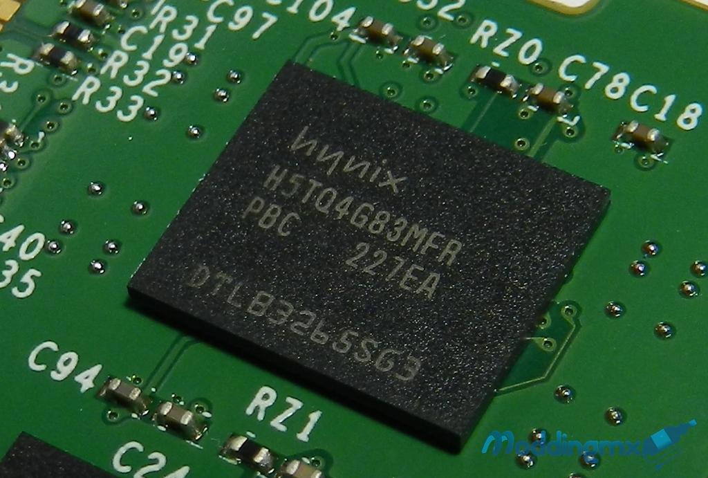 DSCN6550